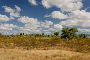 Leie bil Cloncurry, Australia