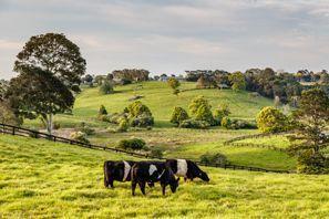 Leie bil Coopers Plains, Australia