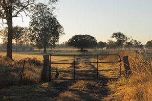 Leie bil Morayfield, Australia