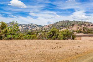 Leie bil Muswellbrook, Australia