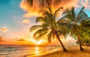 Leiebil Barbados