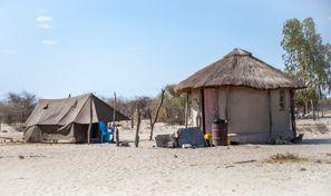 Leie bil Maun, Botswana