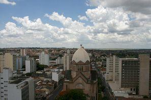 Leie bil Araraquara, Brazil
