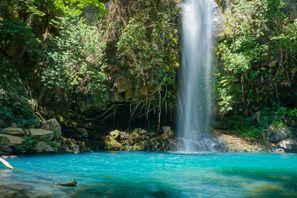 Leie bil Penas Blancas, Costa Rica