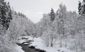 Leie bil Nurmijarvi, Finland