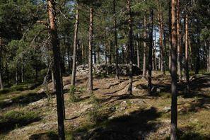 Leie bil Paimio, Finland