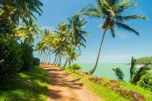 Leie bil Kourou, Fransk Guyana