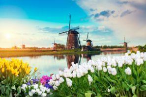 Leiebil Nederland