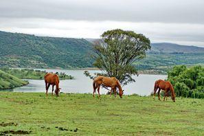 Leie bil Estcourt, Sør Afrika