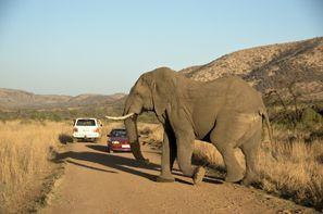 Leie bil Klerksdorp, Sør Afrika