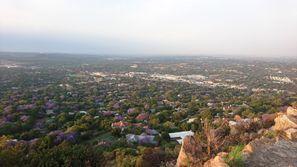 Leie bil Rosebank, Sør Afrika